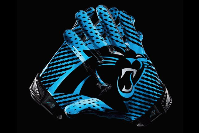 Carolina Panthers Glove 1