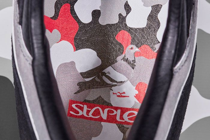 Staple X Pigeon 1