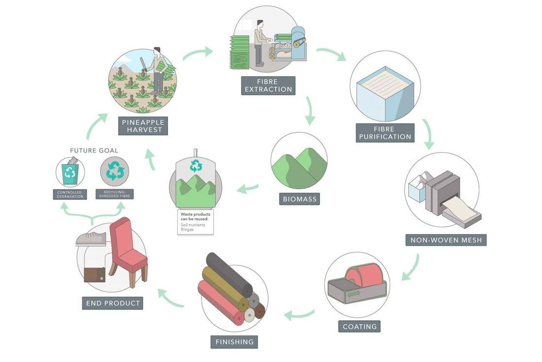 Pinatex Production Process
