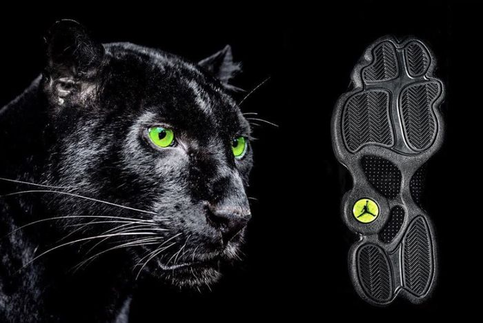 Air Jordan 13 Black Cat3