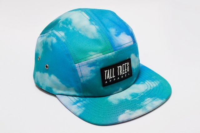 Tall Trees Clouds 5 Panel Angle