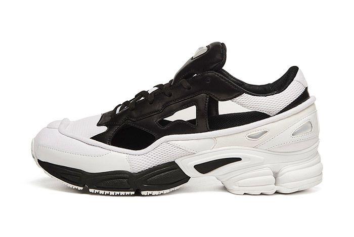 Adidas By Raf Simons Replicant Ozweego 2