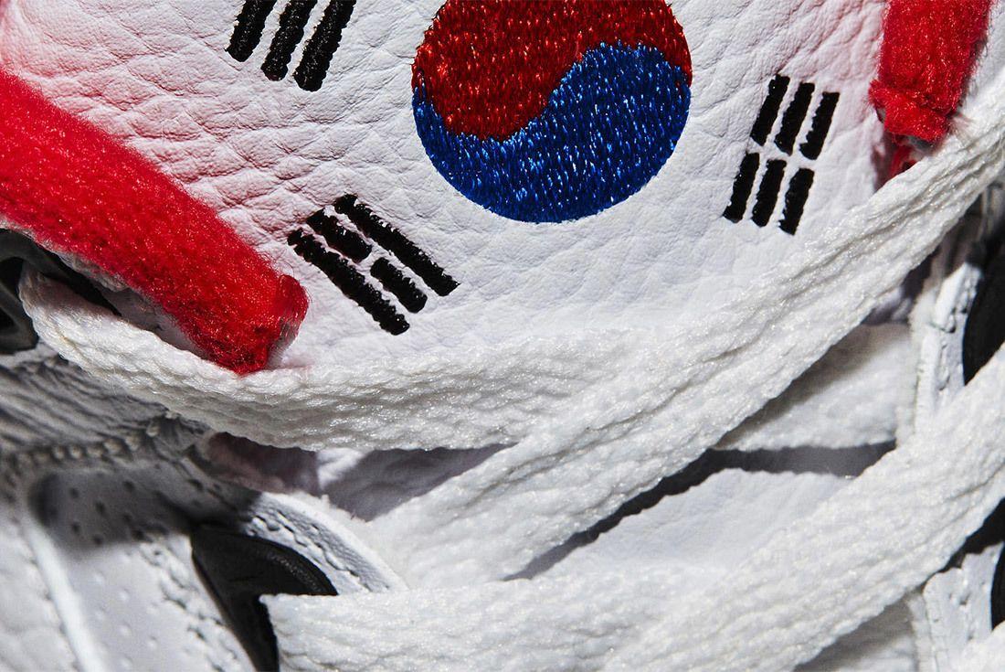 Nike Air Air Jordan 3 Seoul Release Date 12