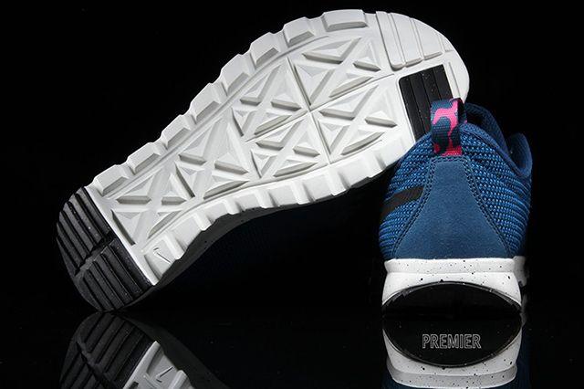 Nike Sb Trainerendor Bluepink 2