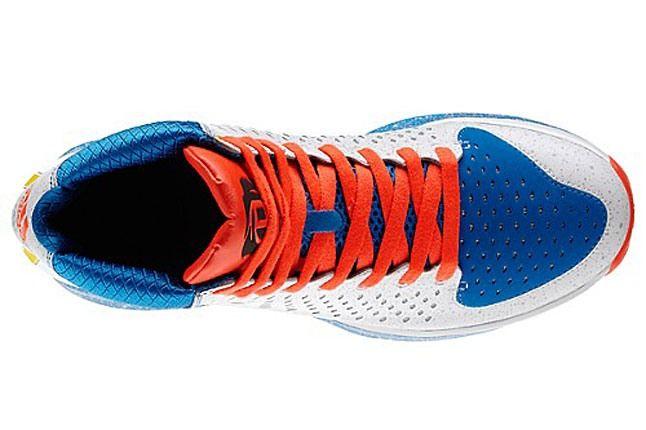 D Rose Shoe 1