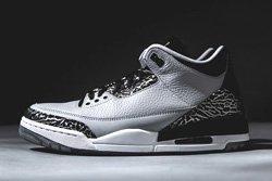 Air Jordan 3 Wolf Grey Bump Thumb
