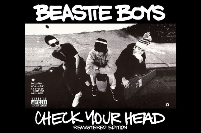 Check Your Head 2