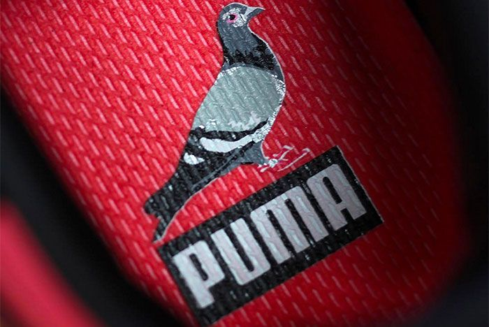 Jeff Staples X Puma 5