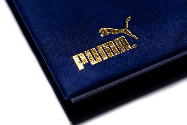 Xlv Stories Of The Puma Suede 3
