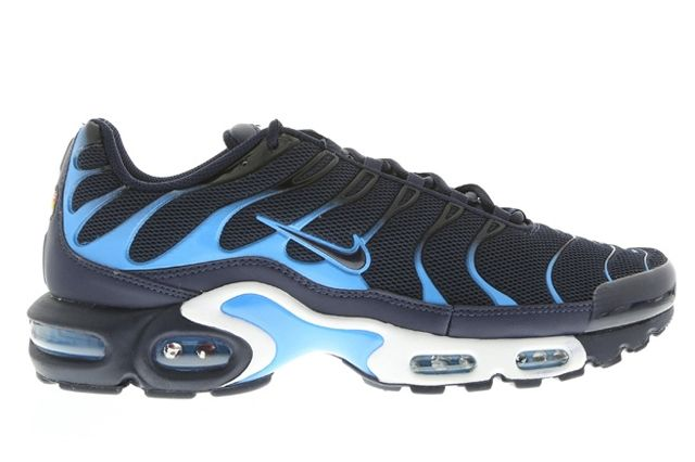 Nike Air Max Plus Obsidian And Blue 1