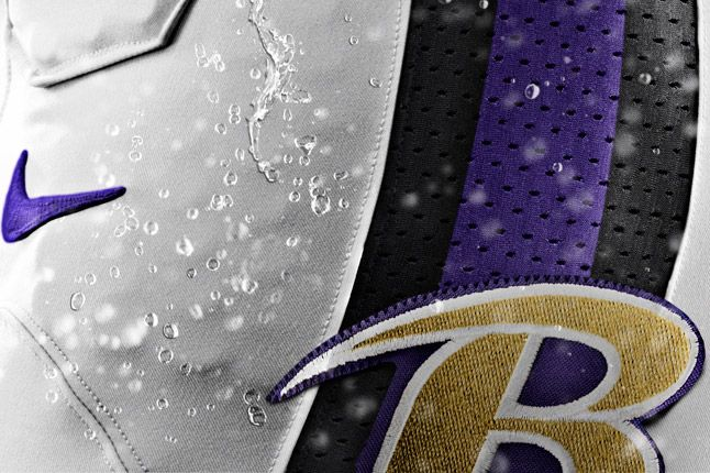 Baltimore Ravens Detail 1