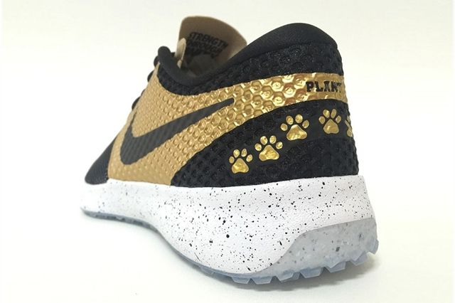 Nike Zoom Speed Trainer 2 Plant High School 3