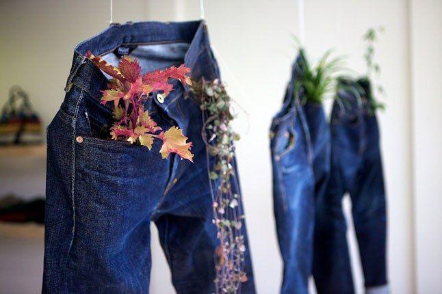 Plant Jeans 1