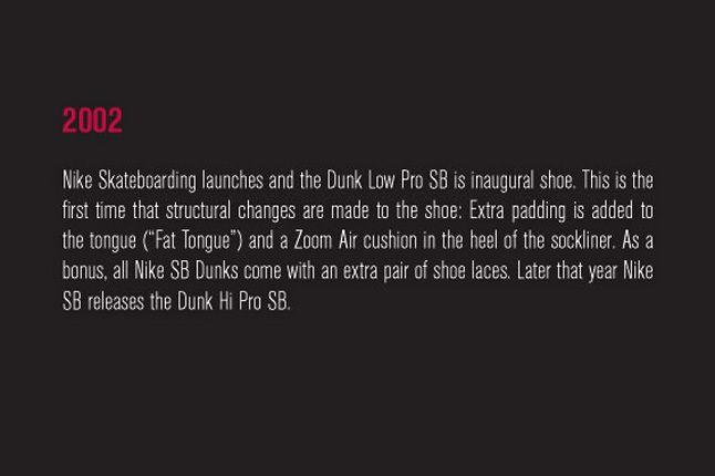 Nike Sb Dunk Pro Book 28 1