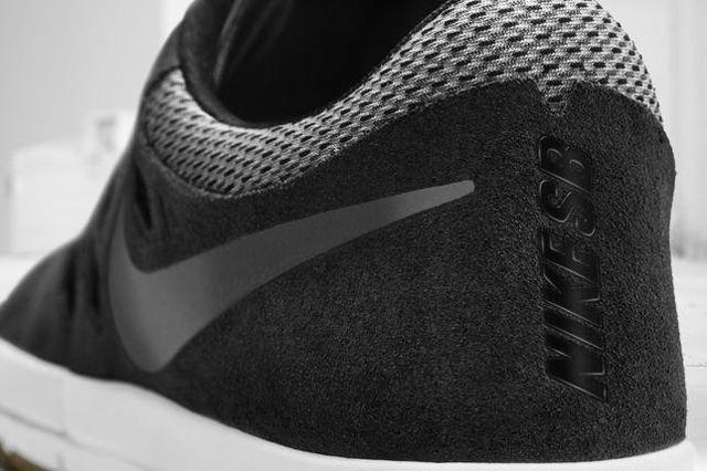 Nike Sb Free Shoe 2