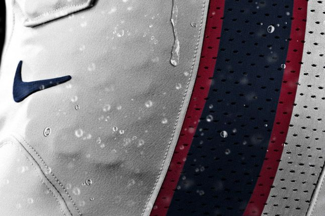 Houston Texans Detail 1