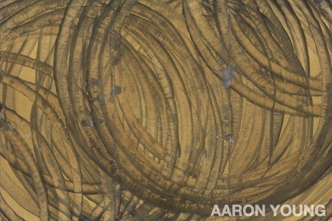 Aaron Young 1