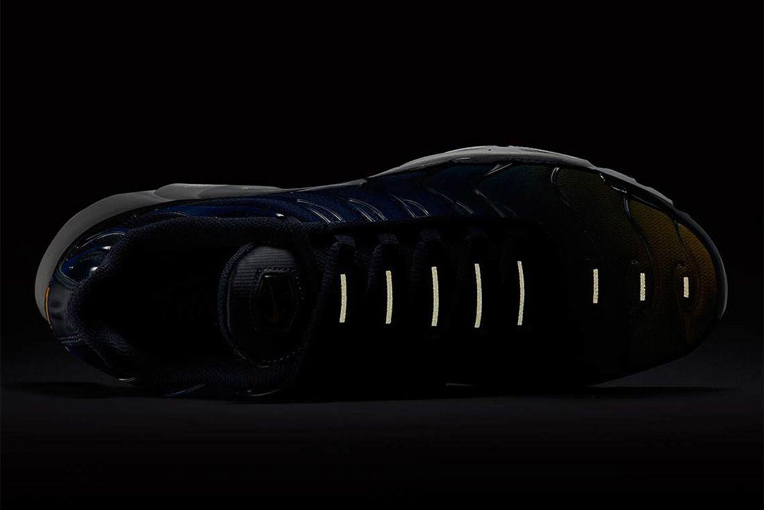 Nike Air Max Plus Gradient Pack 8