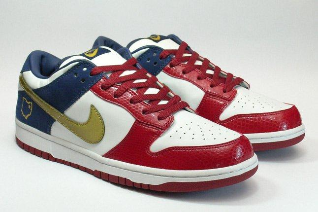 Nike Dunk Sample Lebron Sample 1