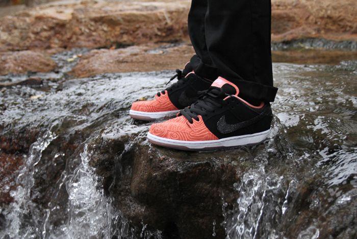 Premier X Nike Sb Fish Ladder Pack2