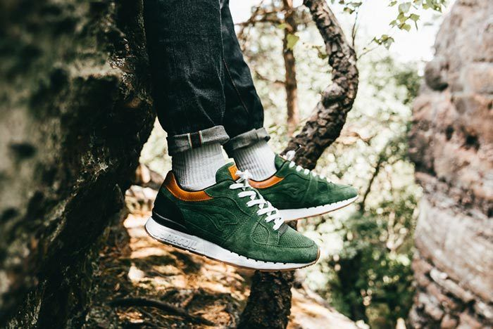 Kangaroos Coil R1 Mighty Forest 1
