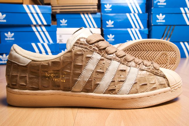 Dean Morris Adidas Superstar 11 1