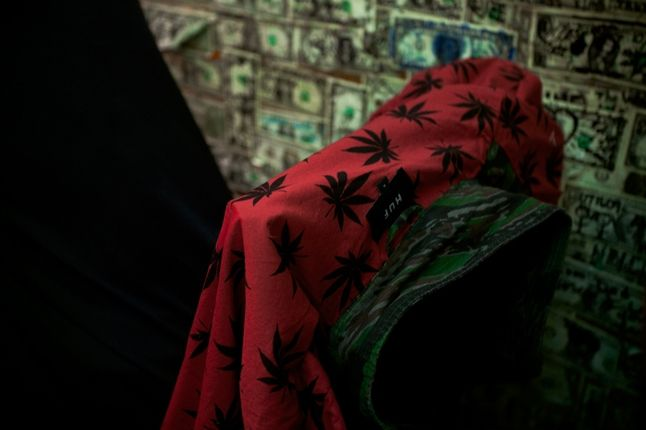 Huf Spring 13 D1 Lookbook Brian Kelley Huf Weed Leaf 1