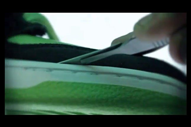 Nike Dunk Sb Autopsy 1