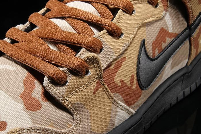 Nike Sb Dunk High Swoosh