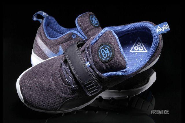 Stussy Nike Sb Trainerendor 3