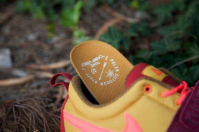 Nike Acg Poler Qs Pack Oz Hype Dc Exclusive 1