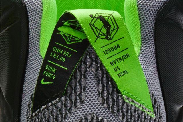 Nike Lebron 12 Dunk Force 8