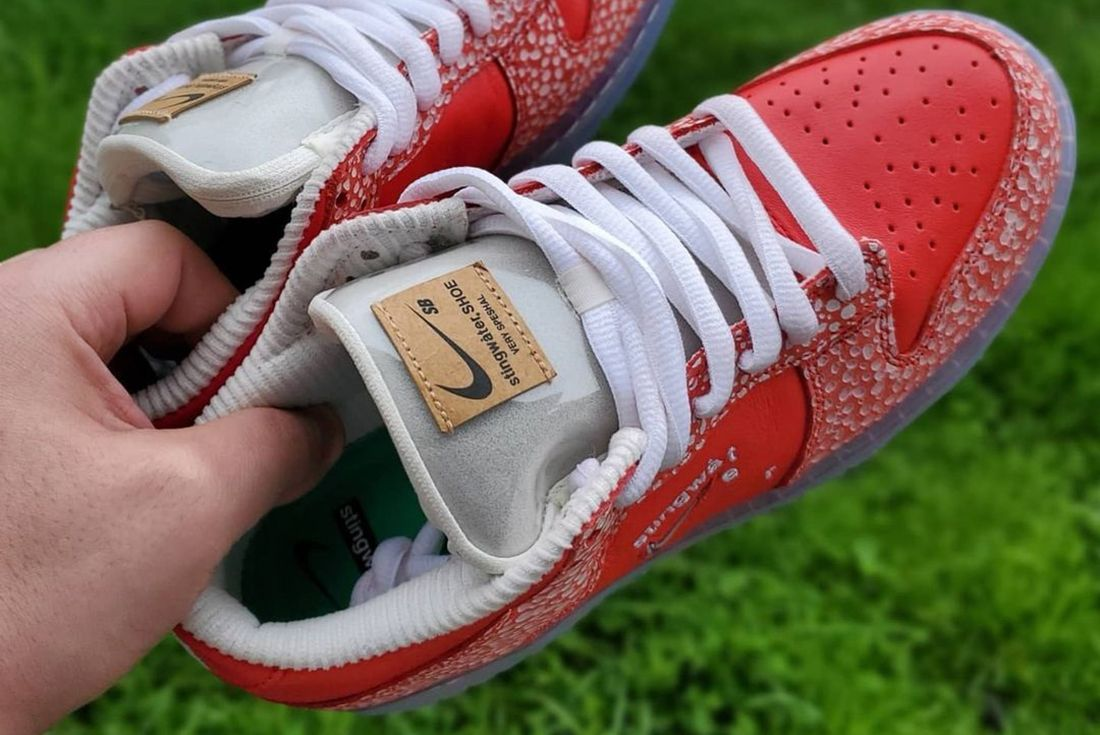 Stingwater x Nike SB Dunk Low up close in hand
