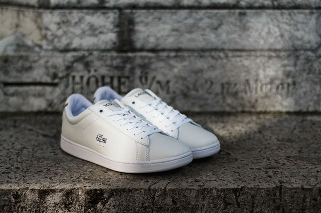 Lacoste Carnaby Albino 5