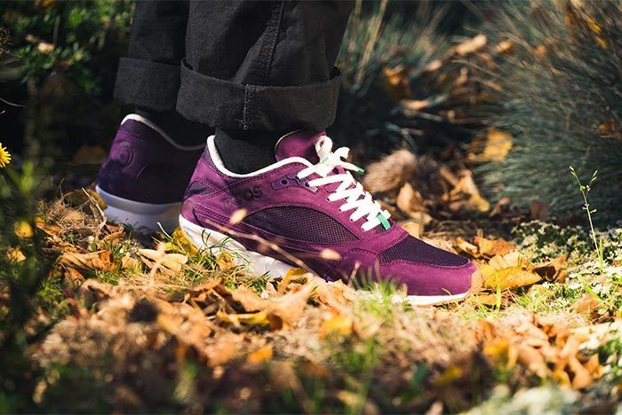 Kangaroos Super Plum By Kane Lowres 23