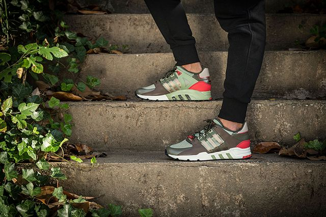 Adidas Eqt Running Gucci 4