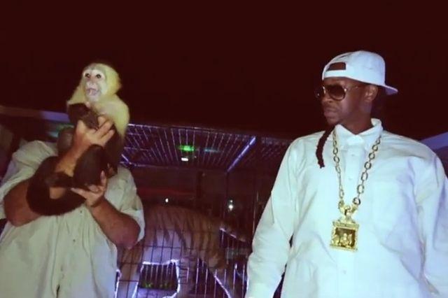 2 Chainz And Monkey