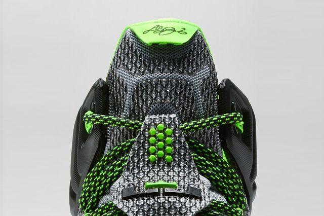 Nike Lebron 12 Dunk Force 6