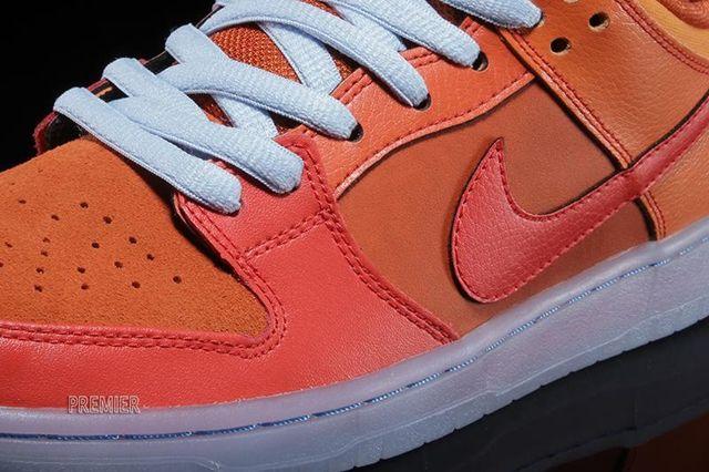 Nike Sb Dunk Low Pro Gamma Orange 2