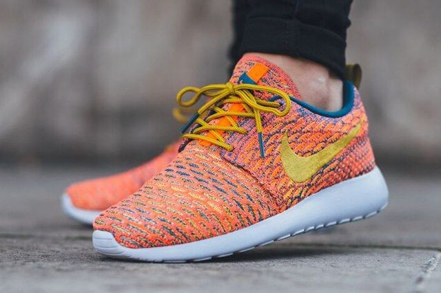 Nike Roshe One Multicolour 6