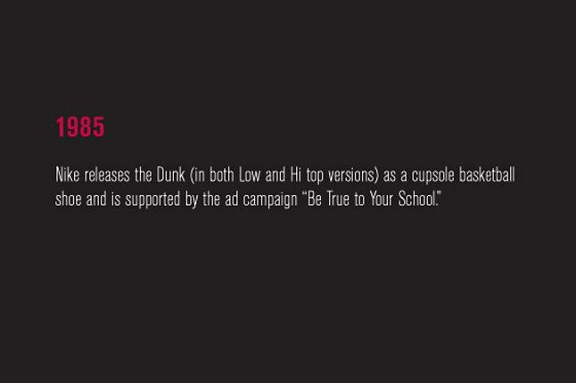 Nike Sb Dunk Pro Book 13 1
