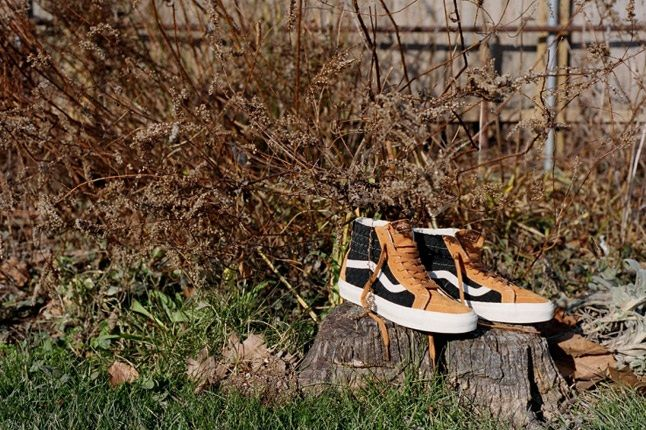 Dqm For Vans Wovens Collection Sk8 Hi Holiday 2012 Log 1