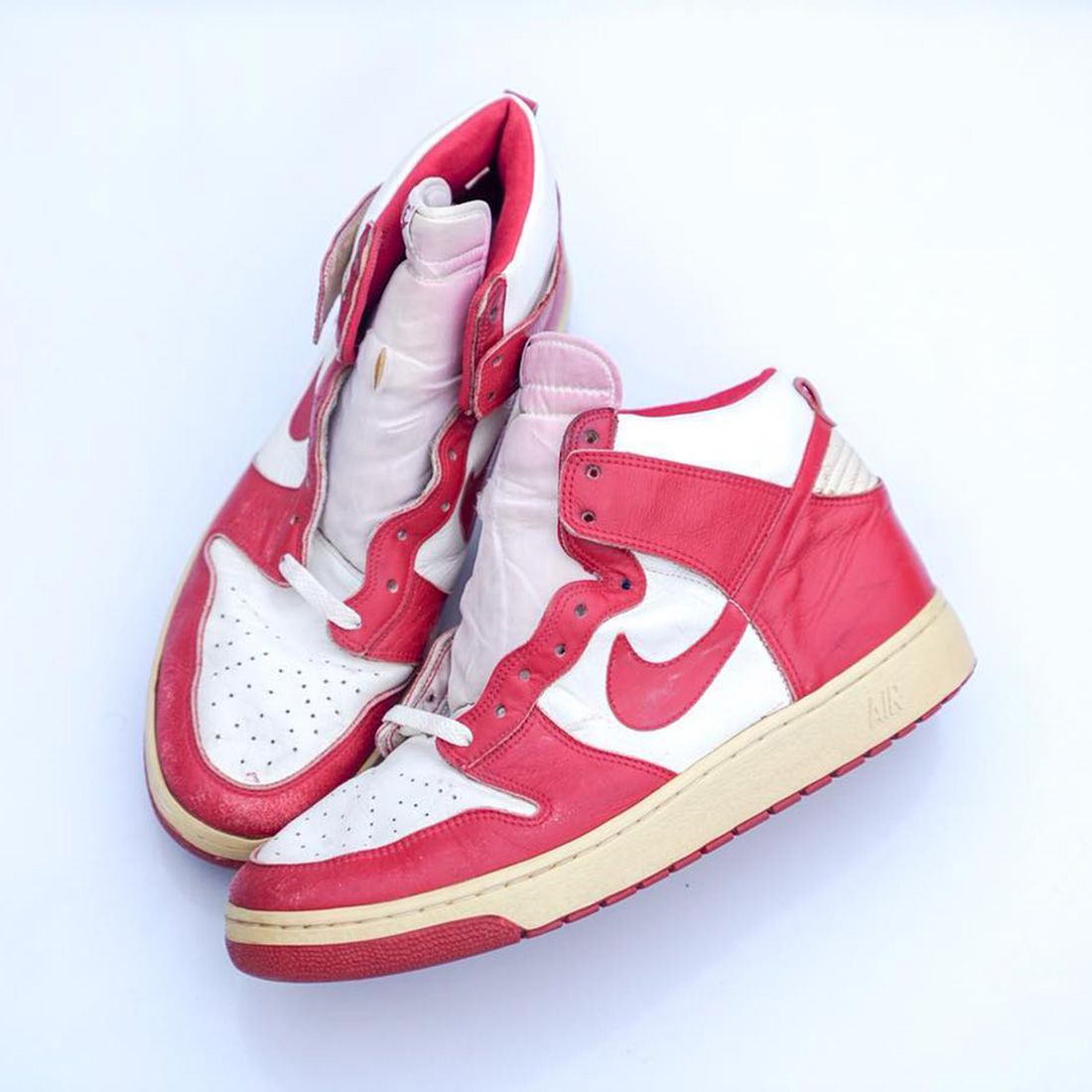 Nike Air Dunk 1985 Archive Dna
