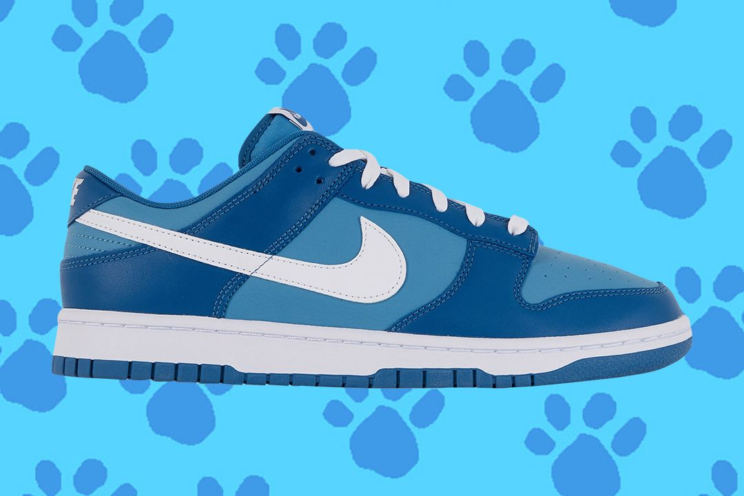 Nike Dunk Low Blue
