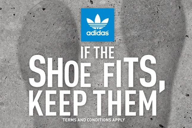 If The Shoe Fits Adidas 646 1
