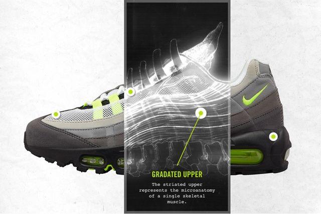 Nike Air Max 95 Anatomical 1