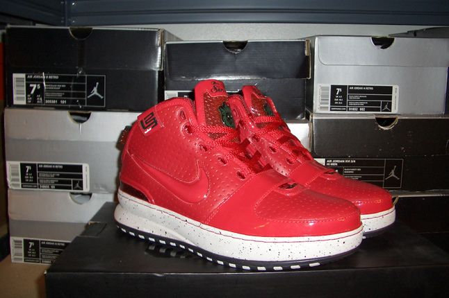 Rebecca Dahms Wmns Basketball Collection Nike Air Zoom Le Bron 6 Big Apple 1