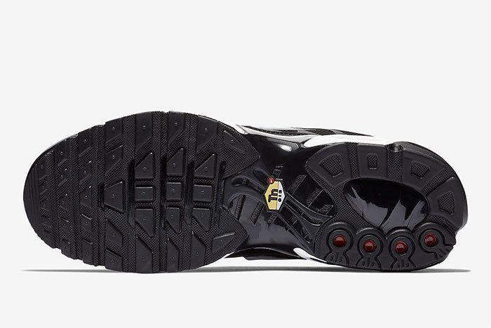 Nike Air Max Plus 815994 004 2
