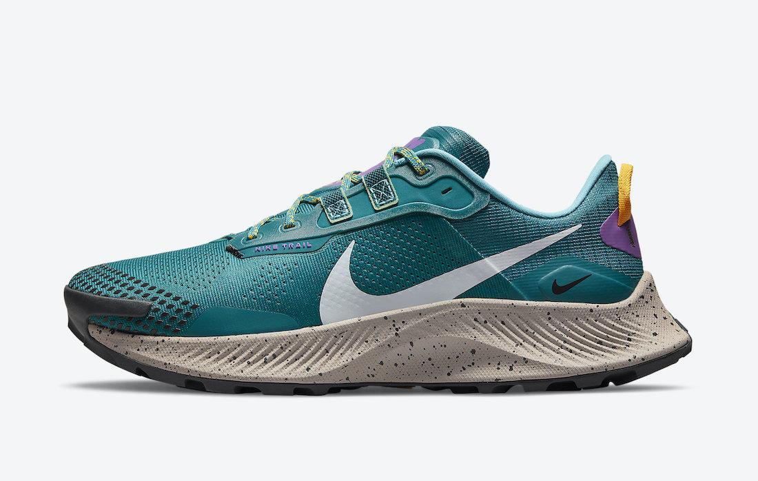 Nike Pegasus Trail 3 DA8697-300