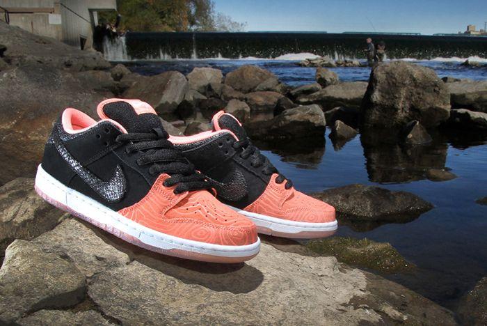 Premier X Nike Sb Fish Ladder Pack11